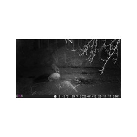 CEL-TEC pinhole k HD-609 v14 16-1411-093